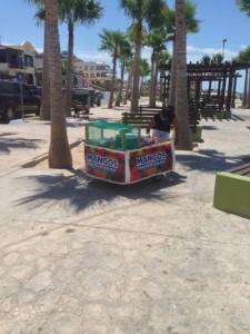 rocky point ice cream stand mangos